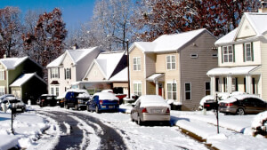 Winter Wonder Pest: Beware of the Pests coming to Town