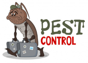 Pests Control